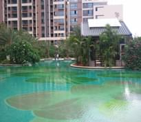 广州华盛大学小筑泳池工程