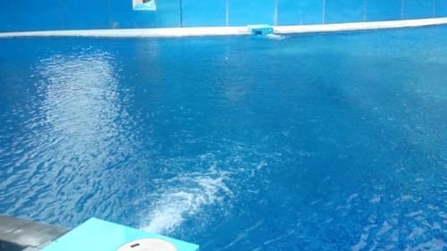 中山丽城乐意居S350/DF10泳池工程
