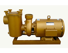 BP系列铜泵
