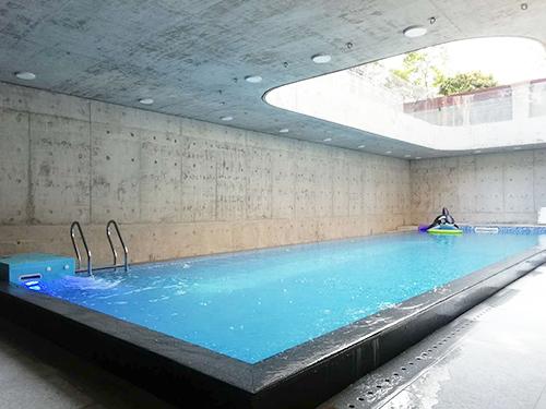 东莞市中信御园私家别墅层流推进器+S350一体化恒温泳池工程